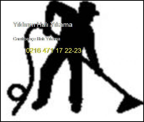 Camlıbahçe Halı Yıkama 0216 660 14 57 Azra Halı Yıkama Camlıbahçe Halı Yıkama