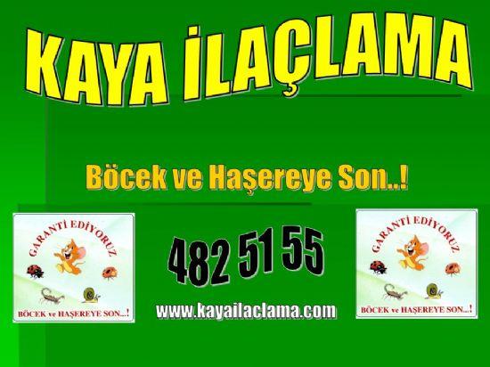 Fındık Faresi,sıçan,fare Yakalama,ilaçlama, Çukurambar Ankara4825155,böcek İlaçlama Ankara