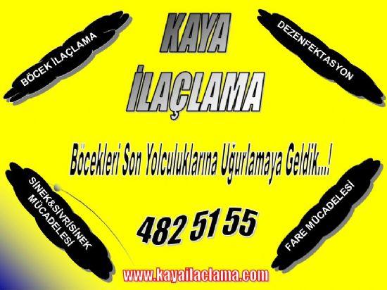 Böcel İlaçlama Firması Ankara 4825155