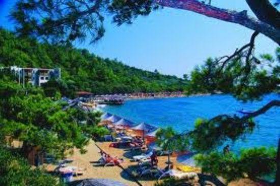 Bodrum Ahşap, Otel Ve Turistik Tesis Teknik Serv