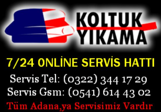 Adana Lider Koltuk Temizleme 322.344 17 29