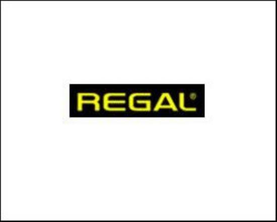 Regal Alemdağ Tamir Servisi Telefonu 0216 540 02 44