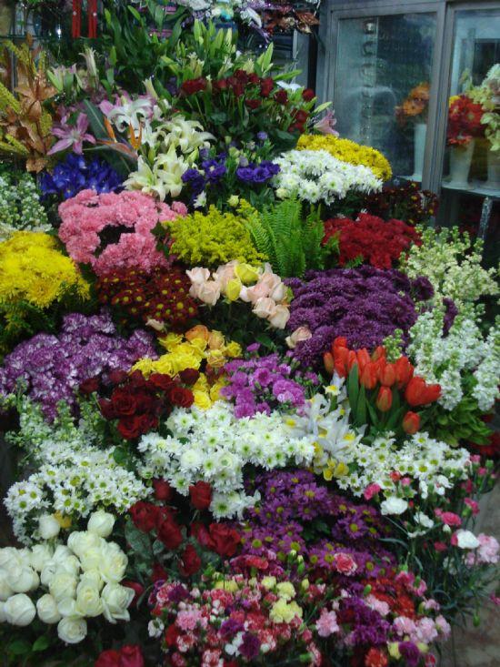 Samsun Rüyam Çiçek Evi Samsun Çiçek Gönder