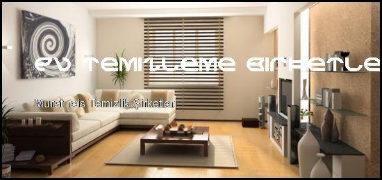 Murat Reis Temizlik Şirketleri Yeniz Siteniz Açıldı  Ev Temizleme Şirketleri Murat Reis Temizlik Şirketleri