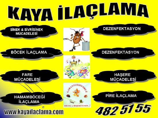 Fındık Faresi,sıçan,fare Yakalama,ilaçlama, Ayrancı Ankara4825155,böcek İlaçlama Batıkent Ankara