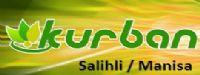 Katkısız Saf Şifalı Bitkisel Yağlar - Kurban Baharat Ltd Şti