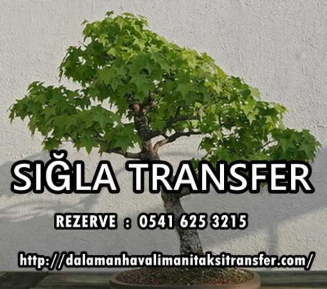 Dalaman Havalimanı Taksi Transfer Dalaman Ucuz Transfer