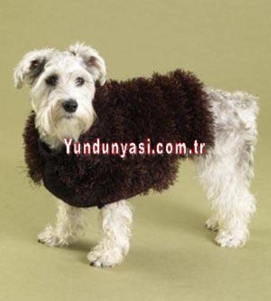 El Örgü Köpek Kıyafeti  Modelleri  - Y-d Yün Dünyası