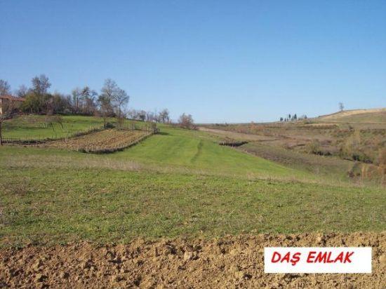 kocaeli kandıra bozburun köyünde yatırımlık 3381 m2 lik satılık tarla