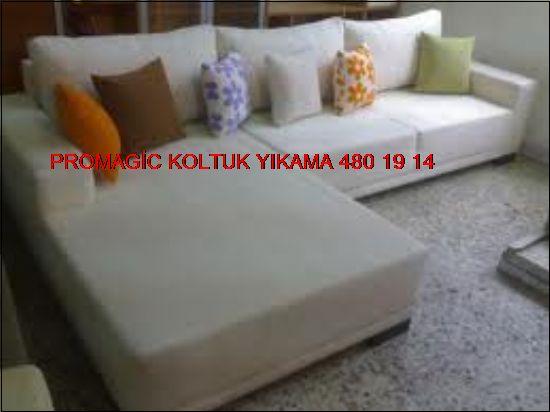 Promagic Antibakteriyel Koltuk Yıkama 0531 990 48 71