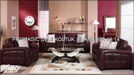 Ankara Deri Koltuk Yıkama Promagıc 0531 990 48 71